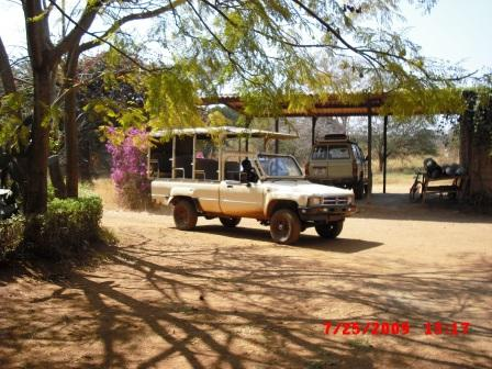 Private Game Drive with Sonate